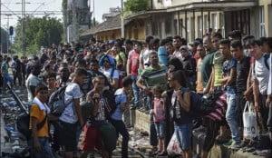 Uchodźcy1
